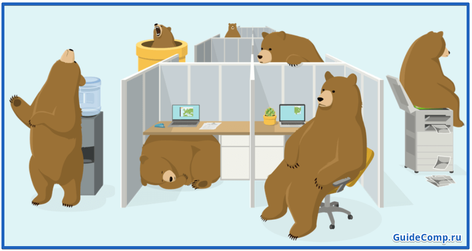 анонимайзер TunnelBear for yandex browser