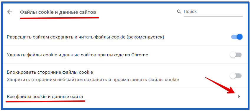 Все файлы cookie и данные сайта in google chrome